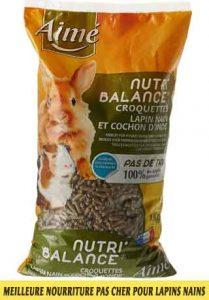 Meilleure-nourriture-pour-lapins-nains-disponible-sur-le-marché-français-04