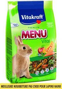 Meilleure-nourriture-pour-lapins-nains-disponible-sur-le-marché-français-05