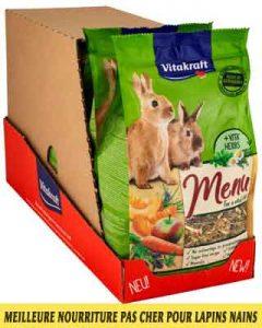 Meilleure-nourriture-pour-lapins-nains-disponible-sur-le-marché-français-07