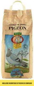 quelle-Meilleure-nourriture-de-pigeons-de-compagnie-01