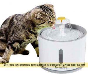Meilleur-distributeur-automatique-de-croquettes-pour-chat-en-2021-10