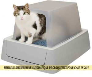 Meilleur-distributeur-automatique-de-croquettes-pour-chat-en-2021-11