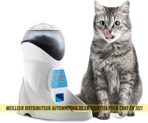 Meilleur-distributeur-automatique-de-croquettes-pour-chat-en-2021-9