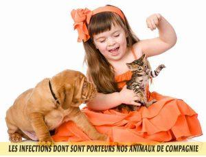 les Chiens et chats et Les-infections-dont-sont-porteurs-nos-animaux-de-compagnie-02